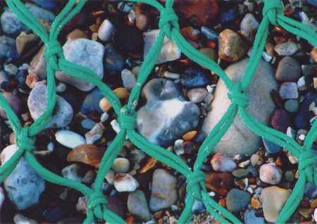 Green Net - Coastal Card