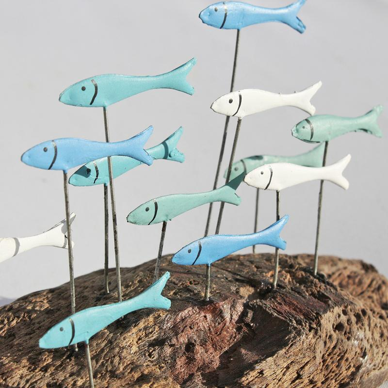 Little Fish Shoal on Driftwood